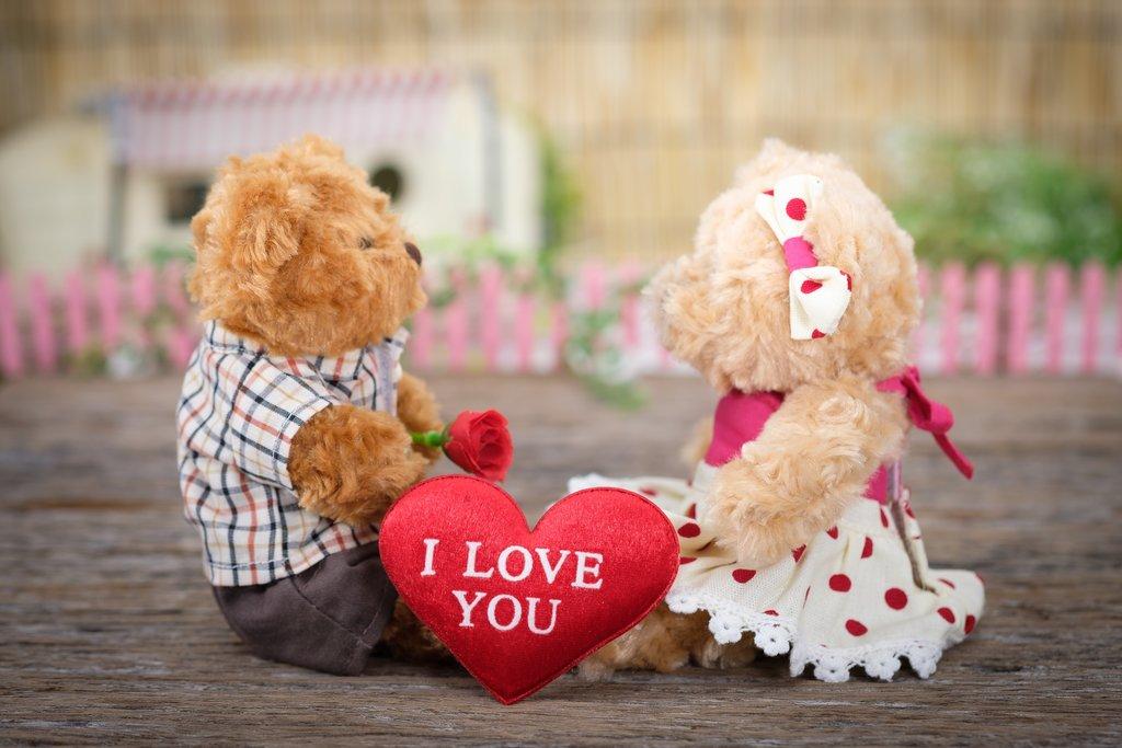 Patología del amor
